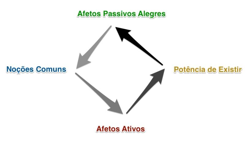 afetos 2